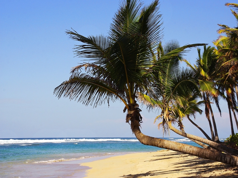 """<cur_name>US$</cur_name><cur_val>333</cur_val> &#8211; <span id=""""translate"""">Cheap flights to</span> <span id=""""translate"""">Punta Cana</span> <span id=""""translate"""">from</span> <span id=""""translate"""">Seattle</span> (United Airlines)"""