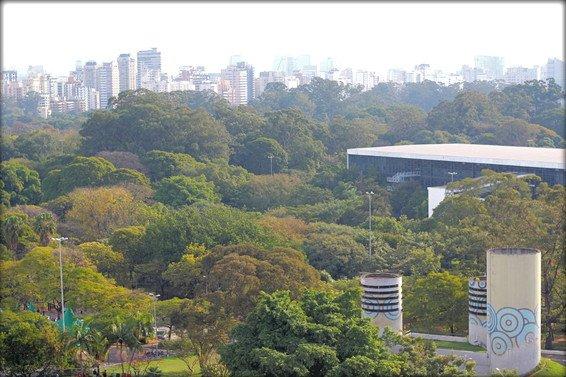 My Favorite 12 Things to do São Paulo