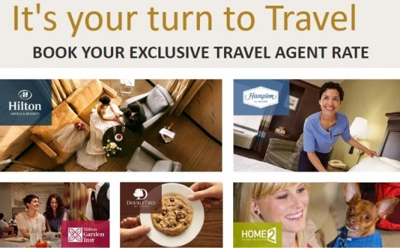 Can Hilton Travel Agent Rates really save you money on your hotel booking?