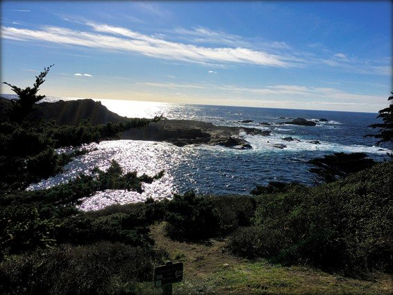 My Favorite 12 Things to do in Monterey, California (incl. Carmel, CA)