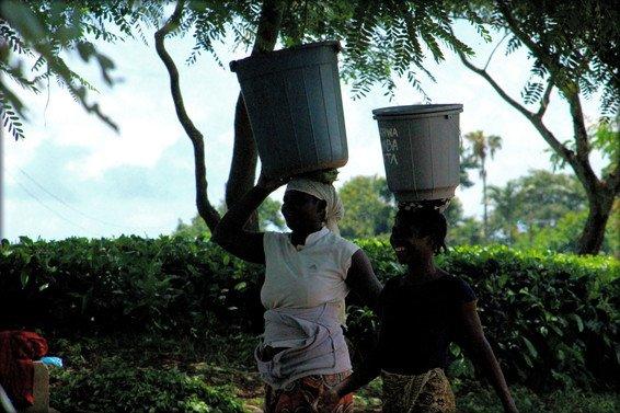 My Favorite 14 Things to do Malawi – Blantyre, Lilongwe & Lake Malawi