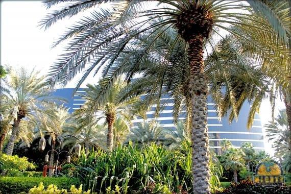 The Grand Hyatt Dubai Hotel Review – a tropical paradise in the heart of Dubai