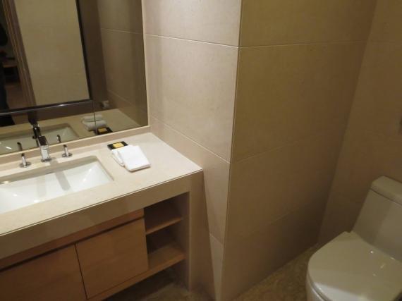 Hyatt Regency Sha Tin Hong Kong Review