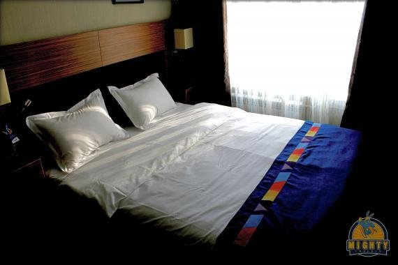 Astoria Hotel, Vladivostok Review