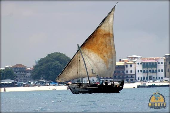Prison Island –  Probably the best thing to do when in Stone Town, Zanzibar! (See the giant turtles, the old prison and snorkel the clear waters)