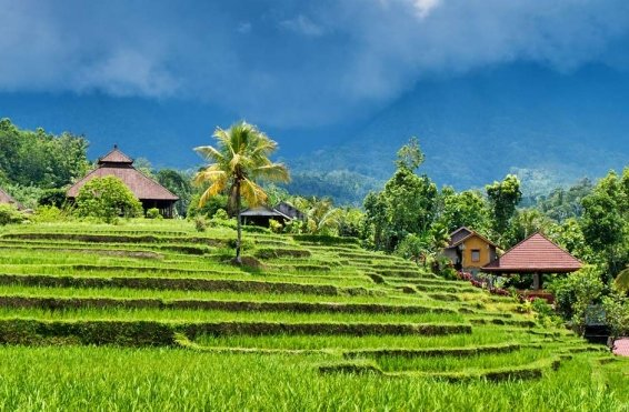 My 28 Favorite Things to do in Bali (Updated in 2019)