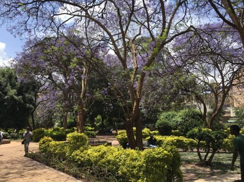 My Favorite 27 Things to do in Nairobi – Updated in 2018