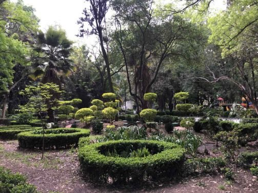 My Favorite 37 Things to do Mexico City (Updated in 2018)