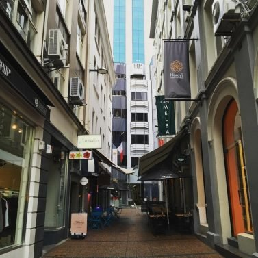 Things to do Auckland