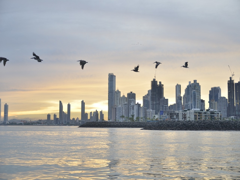 """<cur_name>US$</cur_name><cur_val>394</cur_val> &#8211; <span id=""""translate"""">Cheap flights to</span> <span id=""""translate"""">Panama City</span> <span id=""""translate"""">from</span> <span id=""""translate"""">Eugene</span> (Austrian Airlines)"""
